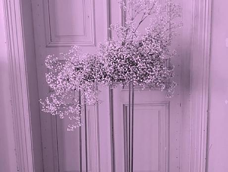פרחים לא משקרים. צילום: Floral by Bini bouquet